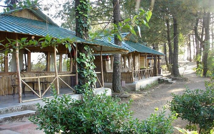 A beautiful hut style resort in Shoghi s
