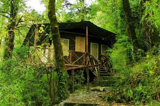 stay at Ayar Jungle Camp while camping in nainital