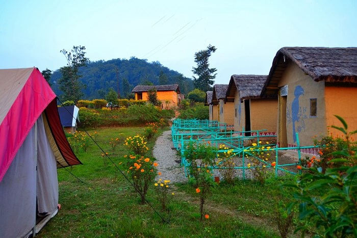 stay at Camp Milieu when camping in nainital