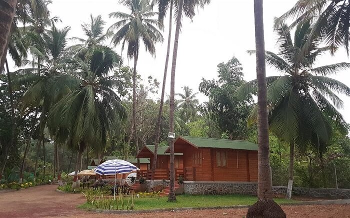 Casa de Kihim wooden cottages surrounded by palm trees