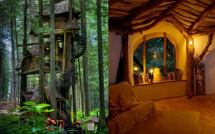 Castle Treehouse ac8753478