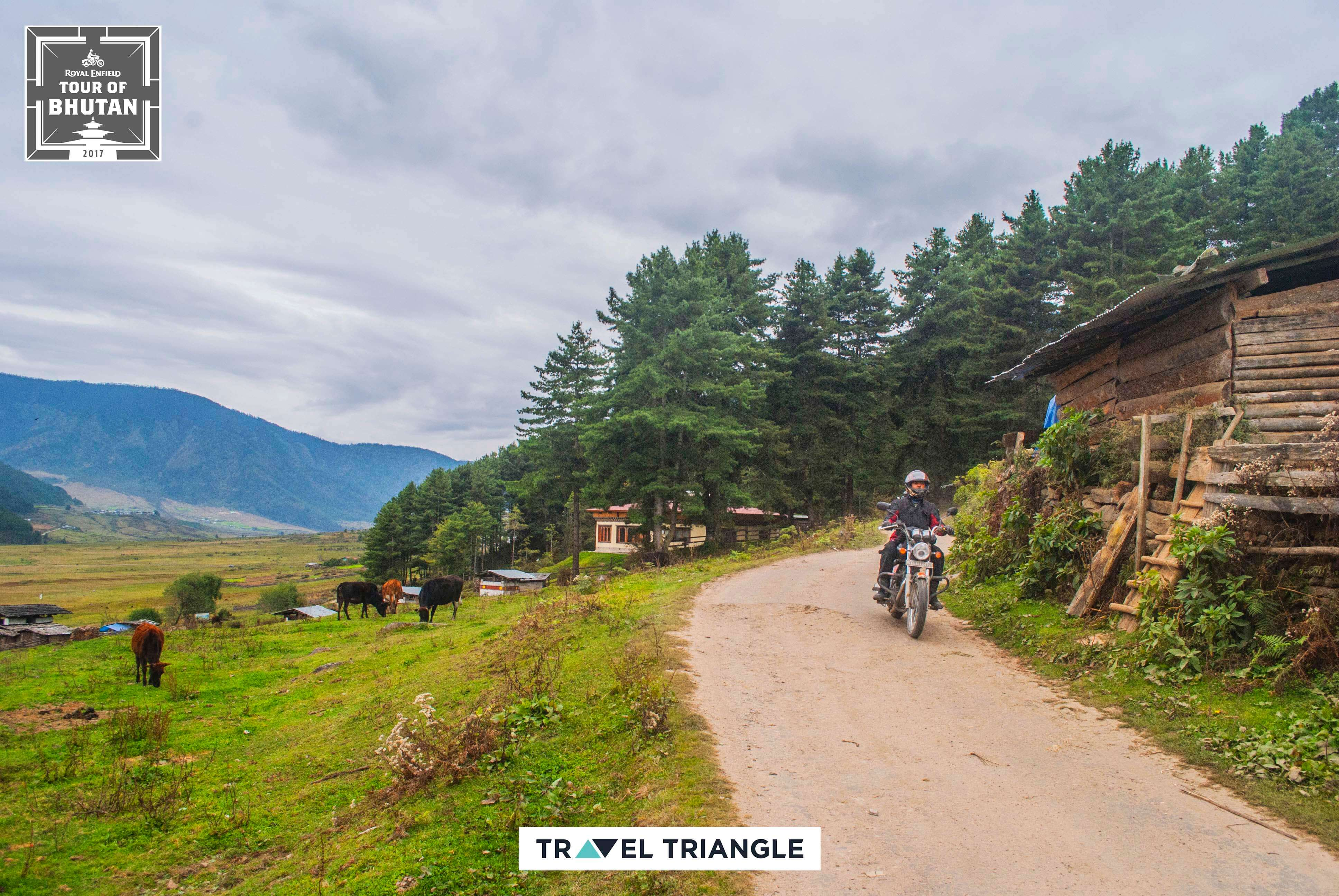 Punakha to Phobjikha: riding through Bhutan's hills