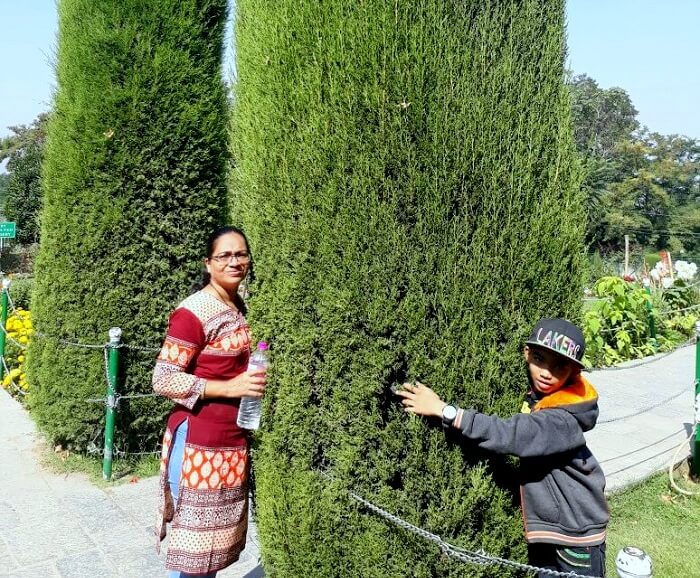 family trip to Kashmir
