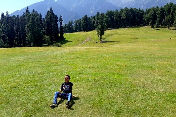ideal spot for family picnics in pahalgam