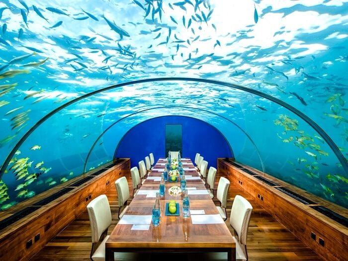 5 Underwater Restaurants In Maldives You Can't Afford To Miss