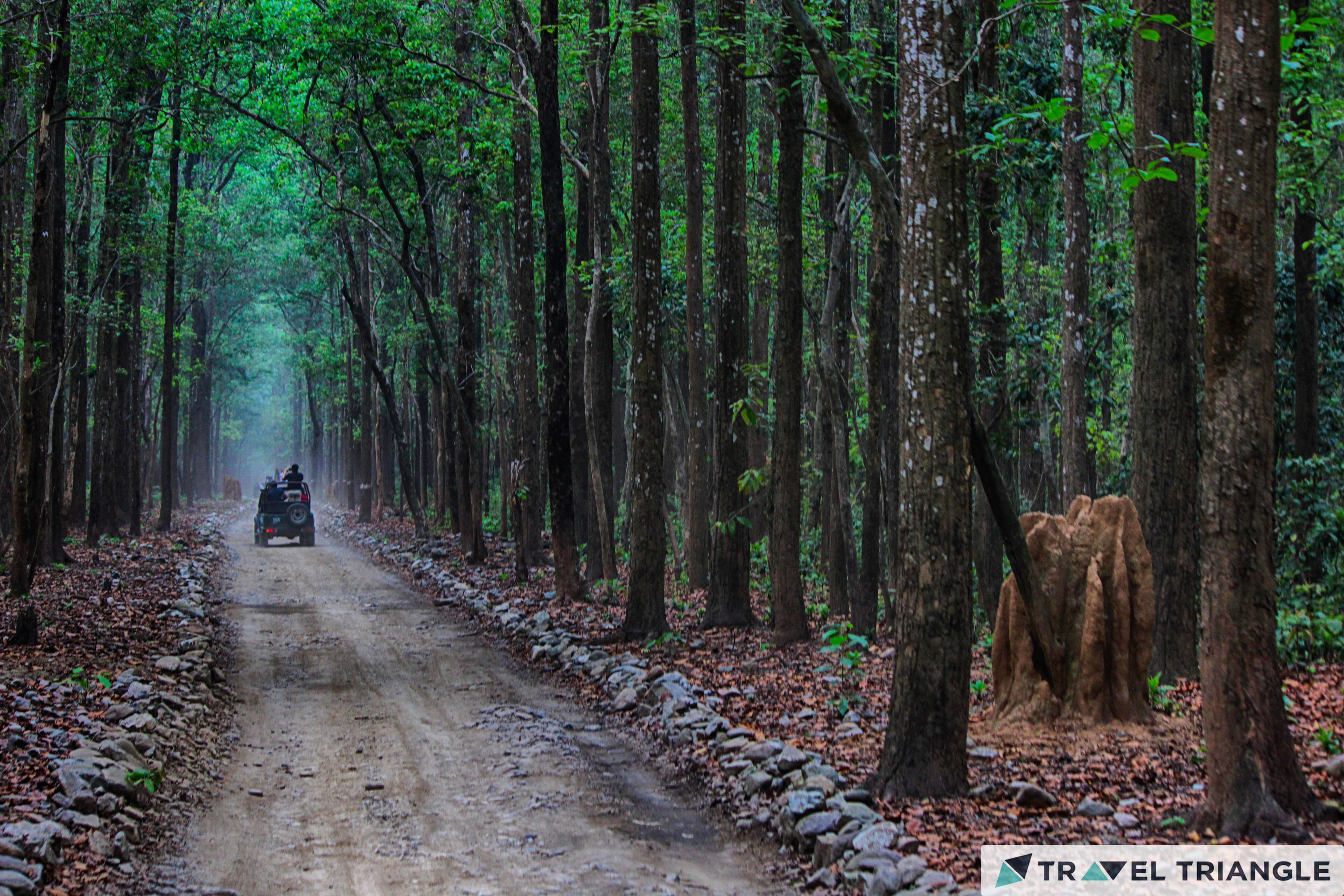 jim corbett trail