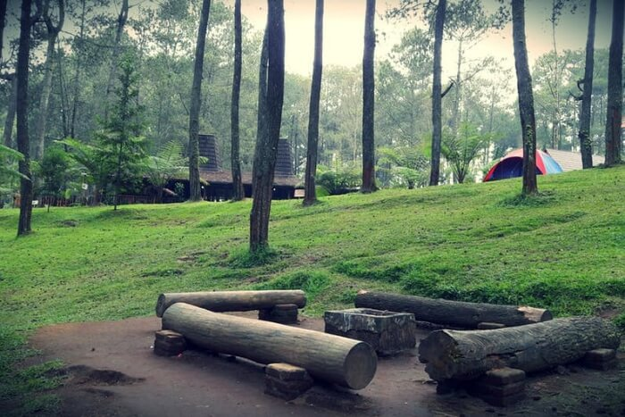 Kulgi nature camp