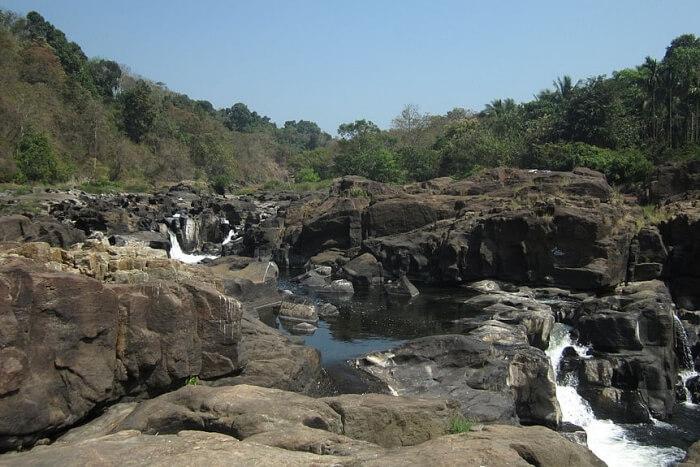 Moulangi Eco Park