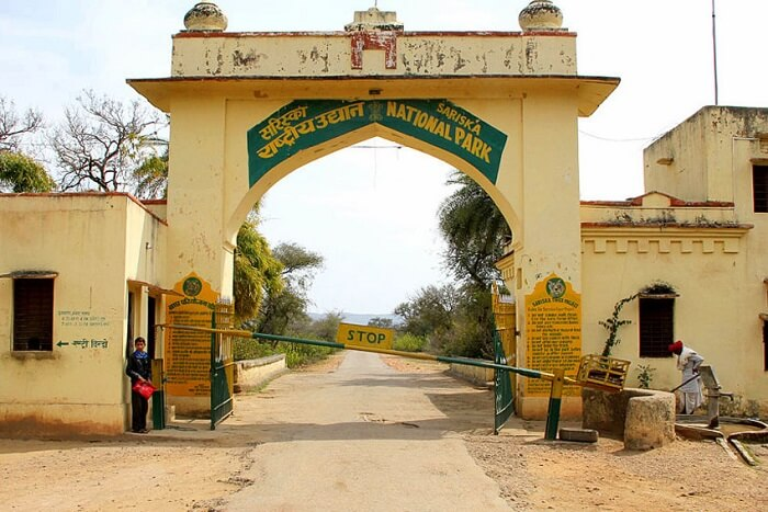 Sariska National Park Entry Fee