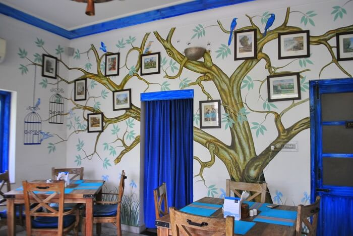 dine at the quirky cafe Taruveda