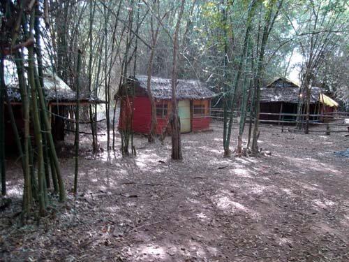 an old resort inside a jungle