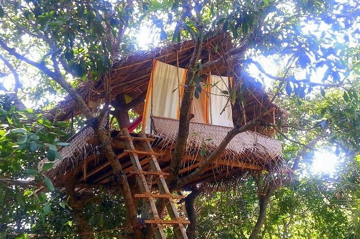 Tree House In Namaste Yoga Farm in gokarna