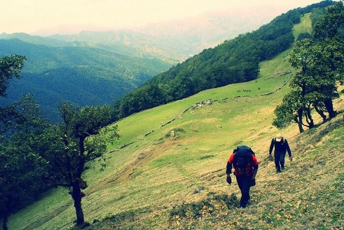 go trekking in dehradun
