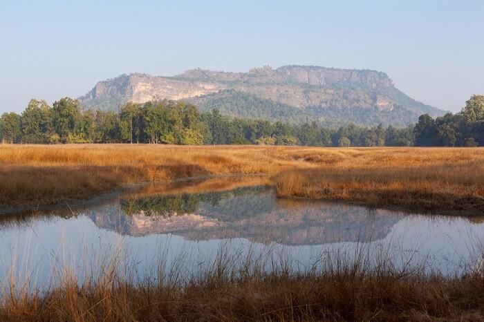 hills in bandhavgarh national park