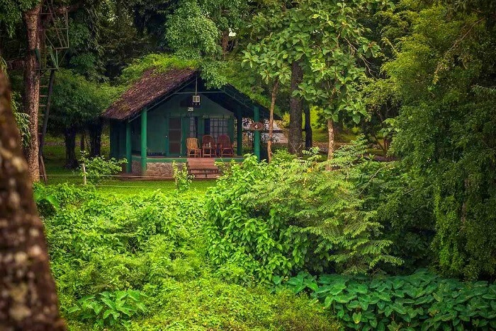 places to visit in dandeli cover