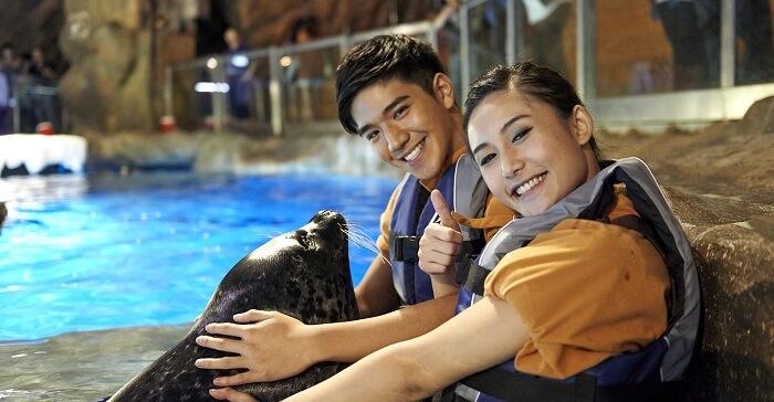 seal show in ocean park hong kong