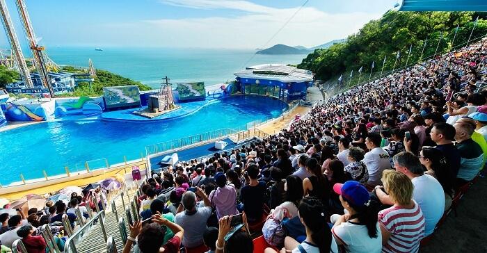 ocean park shows