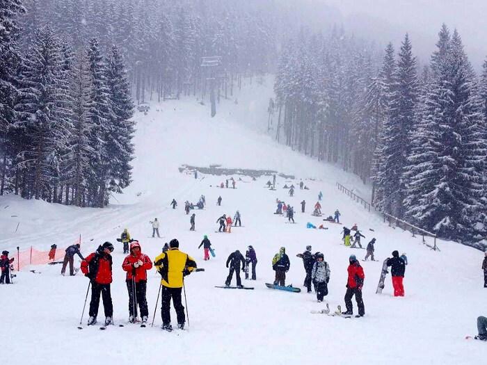 shimla winter carnival