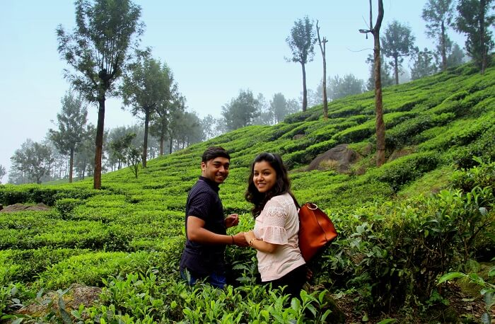 couple in tea gardens kerala