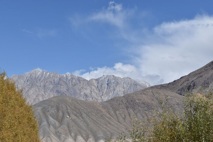 lokpal romantic trip to ladakh: nubra scenic views