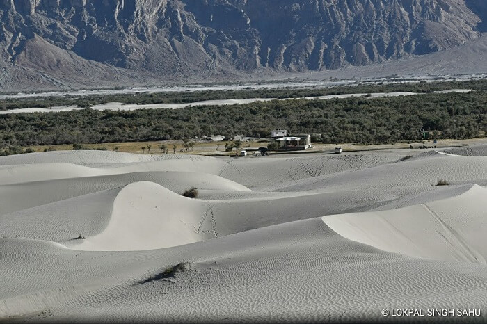 lokpal romantic trip to ladakh: nubra valley