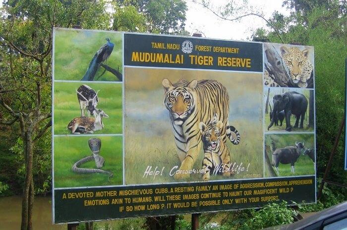 Mudumalai National Park Basic Information