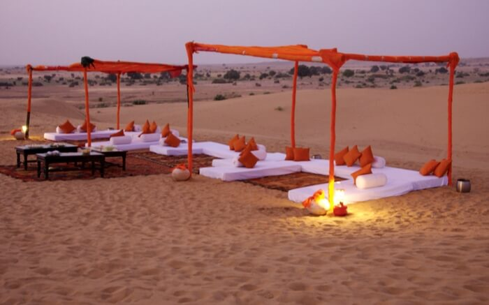 Honeymoon in the heart of the great Thar Desert, Jaisalmer