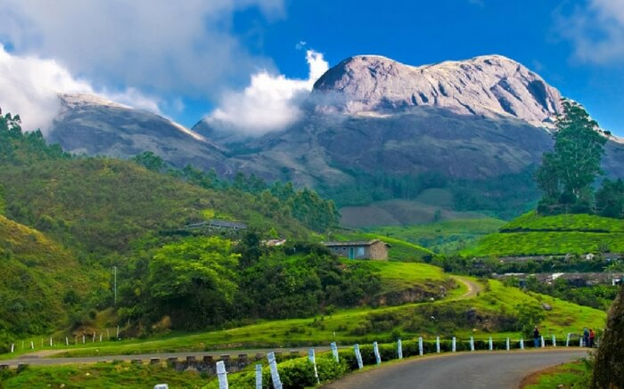 Tea Gardens Munnar, captivating scenery redefine your love for you