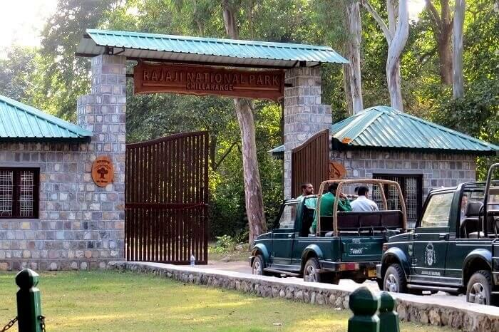 entry to rajaji national park