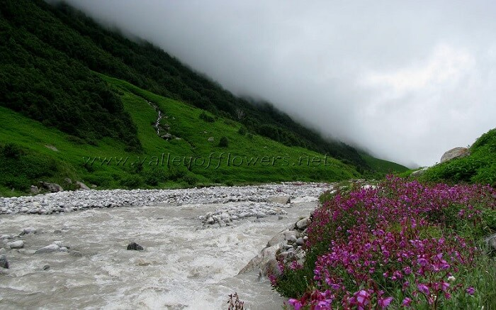 pushpawati river bed near valley of flowers