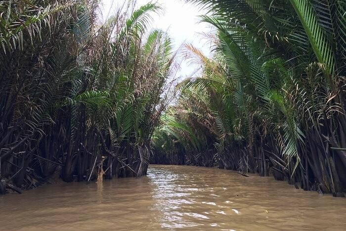 8. Mekong Delta