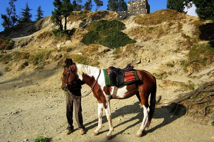 Horse Riding in Naukuchiatal