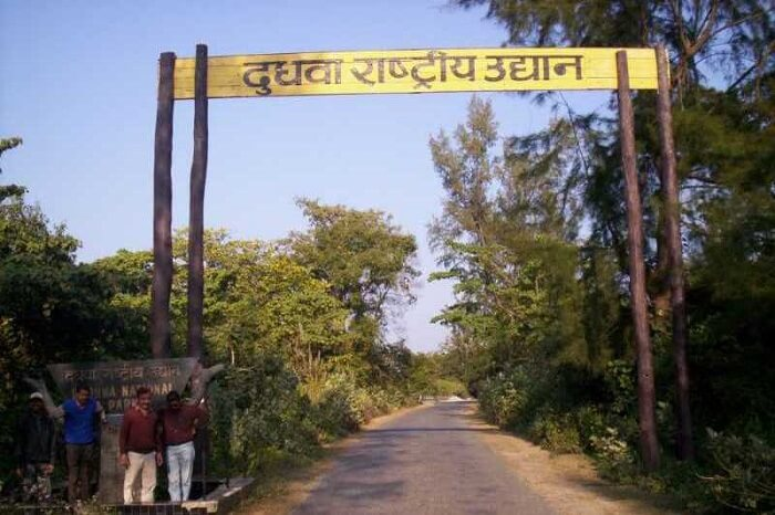 Dudhwa National Park Information