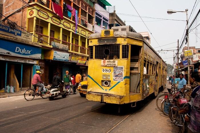 Take A Fun Tram Ride
