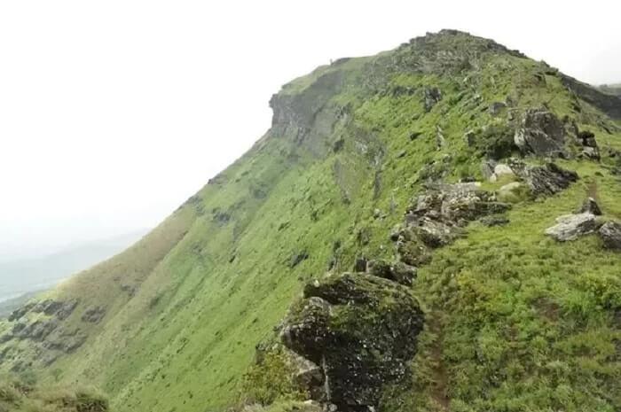 Z Point Trek In Chikmagalur