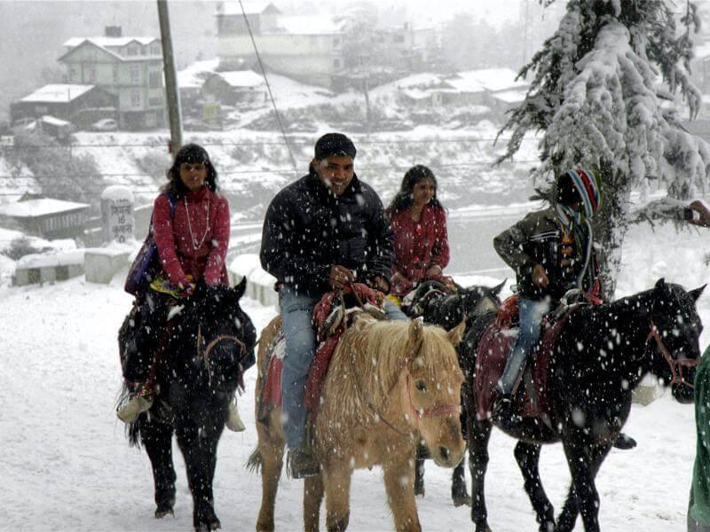 people enjoying horse ride in snowfall