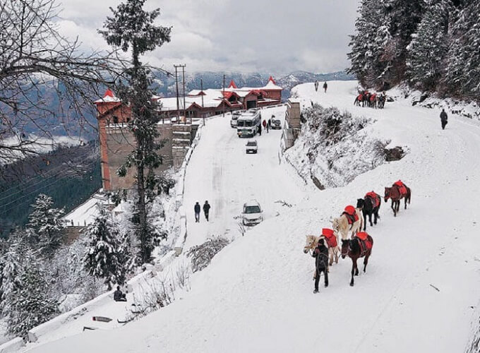 average temperature in shimla winter