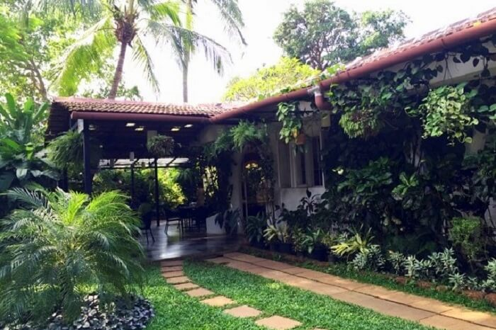 Best Cafes in Goa