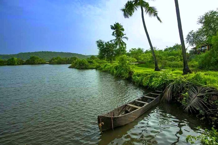 backwaters escape in goa