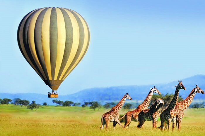 10 Things To Do In South Africa For Adventure-4463