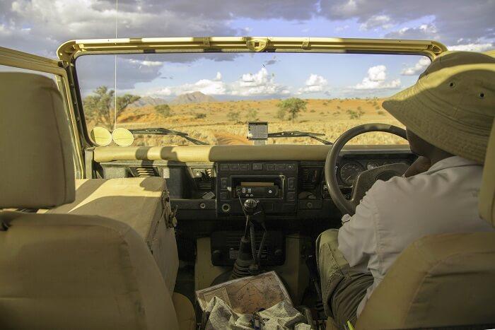 tips for jungle safari: Opt For Guided Organised Safari Tours
