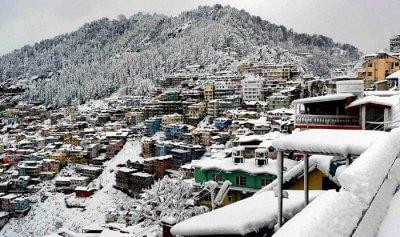 Shimla DP