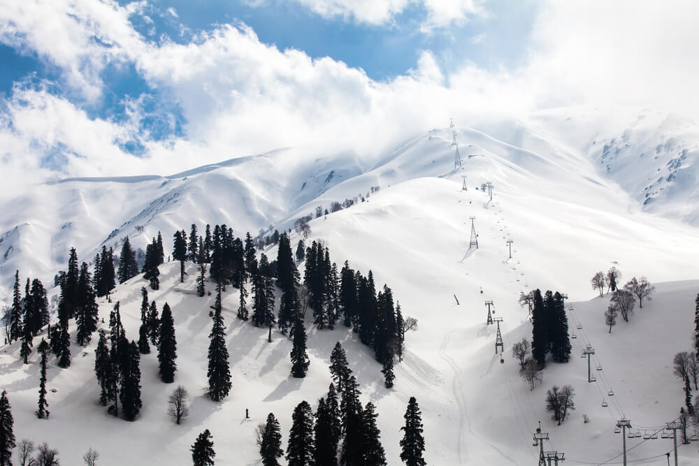mountain slopes and trees covered in snow