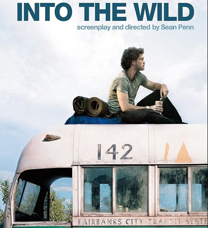 into the wild novel