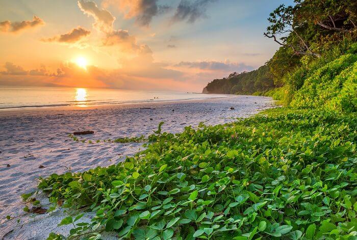 radhanagar beach in havelock, andaman
