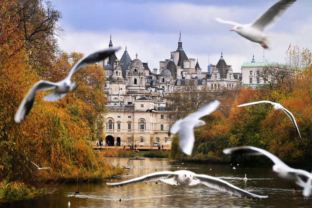 Hyde park castle and birds flying