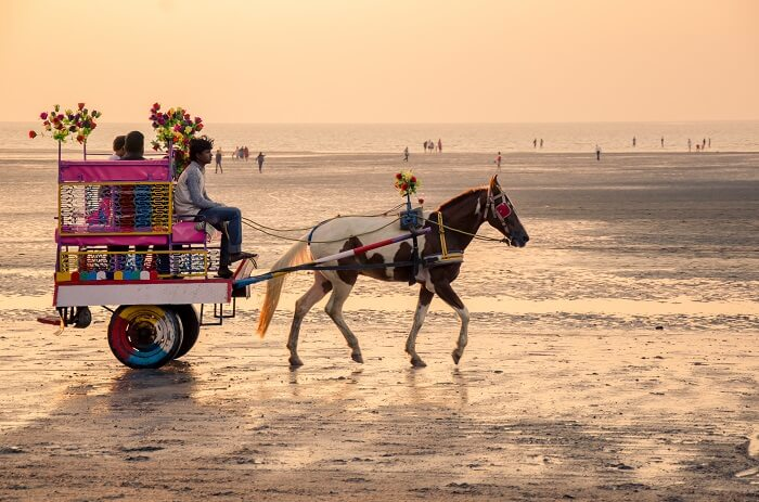 Famous Horse Ride Daman