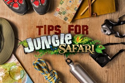 tips for jungle safari cover picture