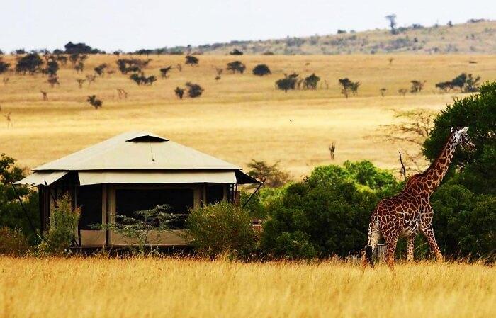 Luxury Hotels In Kenya