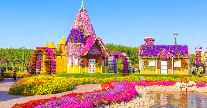 Dubai Miracle Garden A Virtual Tour To World S Largest